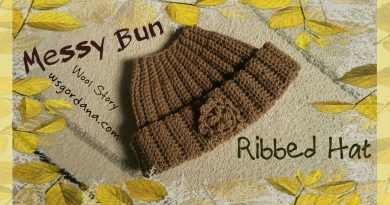 133 – Crochet Messy Bun Ribbed Hat