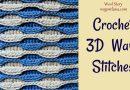 216 – How to Crochet 3D Wave Stitch – 2 colors
