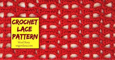 233 – Crochet Lace Pattern for Blouses or other projects
