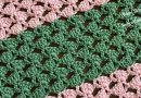 242 – How to Crochet Easy Shell Stitch Pattern