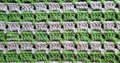 331 – Crochet an Easy Block Stitches Pattern