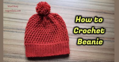 336 – How to Crochet Beanie Ribbed and FPDC Stitches With Scheme